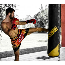 MUAY THAI - KICK BOXING - THAI BOXING
