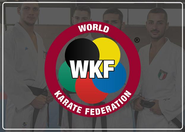 World Karaté Fédération - Kappa Karaté